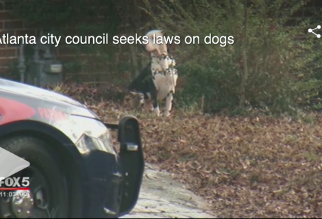Atlanta Councilwoman introduces legislation following dog attack that killed 6-six-year